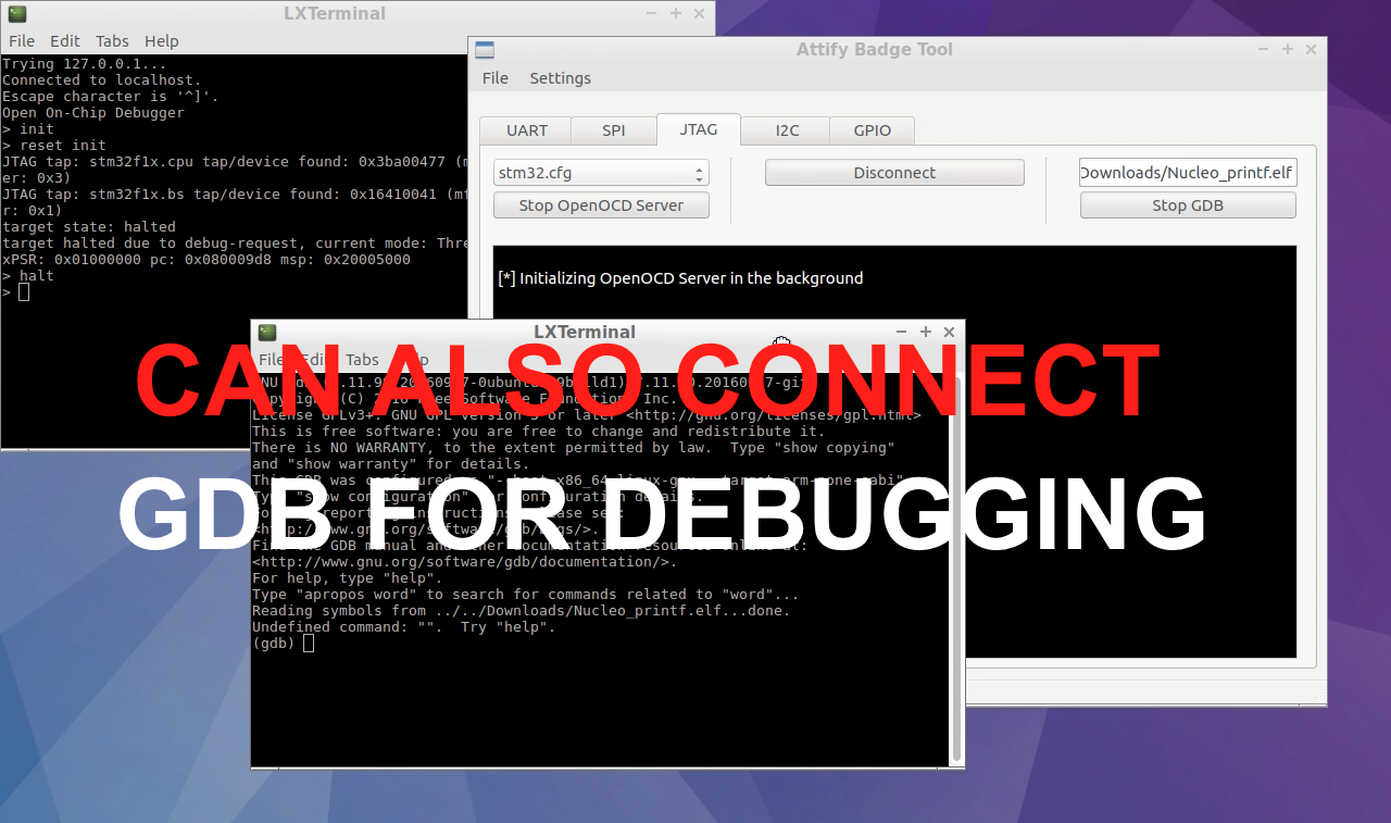 Connect GDB for JTAG debugging