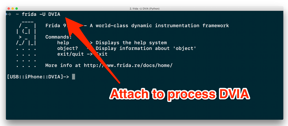 Attaching to an iOS process using Frida