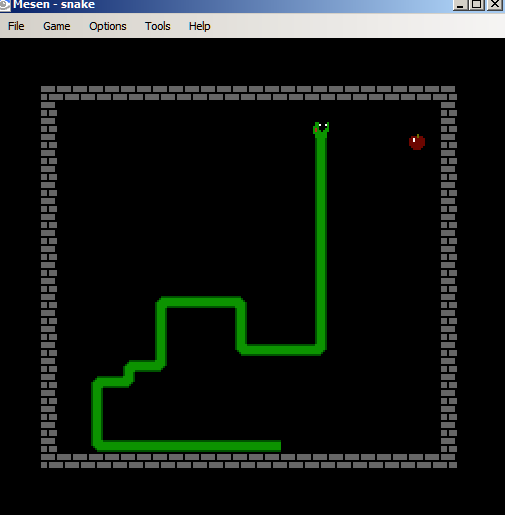 Figure 2: A typical snake game